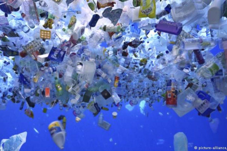 Запрет на пластиковую упаковку: Евросоюз и Россия