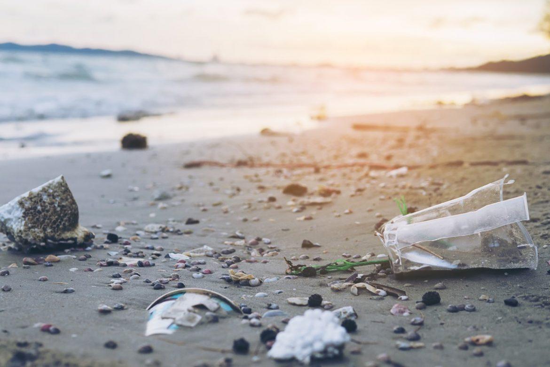 Разлагается ли «биоразлагаемый пластик»? Как с ним обращаться и чем его заменить